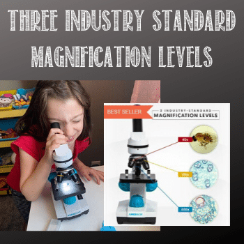 three magnification levels