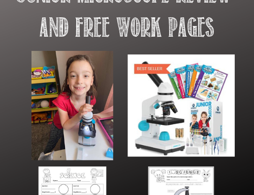 Junior Microscope Review and Free Instant Work Pages PDF