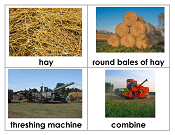 Threshing-time-story-and-card-sort_Page_16