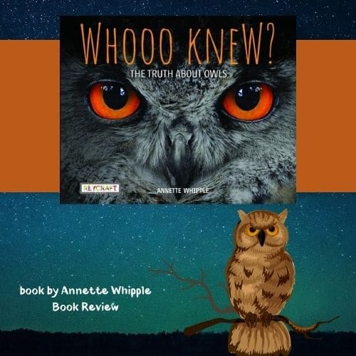 Whooo-knew-Truth-about-Owls-nonfiction-book-about-Owls-by-Annette-Whipple