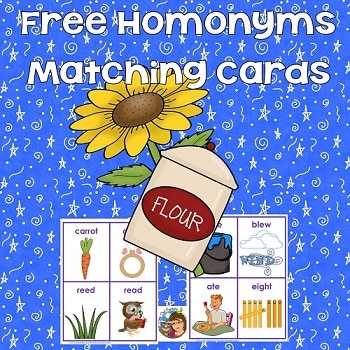 freebie-homonyms-cards-to-accompany-Bunnicula