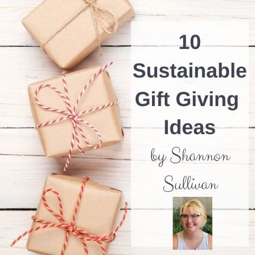 10-sustainable-gift-giving-ideas-by-shannon-sullivan