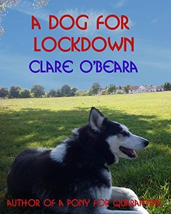 A Dog for Lockdown Book Teaching Supplement Free