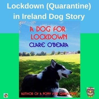 A-Dog-for-Lockdown-set-in-Ireland-by-Clare-O-Beara-author