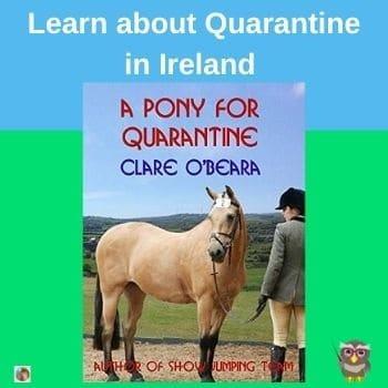 A-Pony-for-Quarantine-set-in-Ireland-by-Clare-O-Beara-author