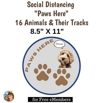 social-distancing-paws-here-8-5-X-11-inch-letter-size