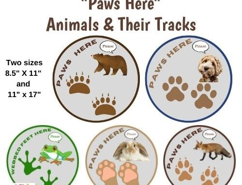 Social Distancing Animal Track Circles for the Classroom