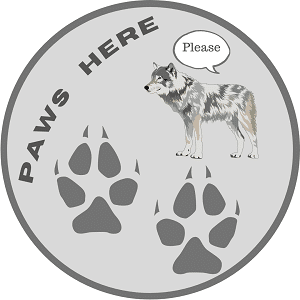 wolf-please-social-distancing--classroom